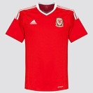 Wales Home 2016 - 2017